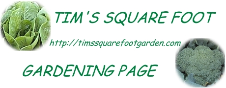 Tim's Square Foot Gardening Page